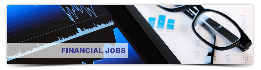 Financial Executive Jobs